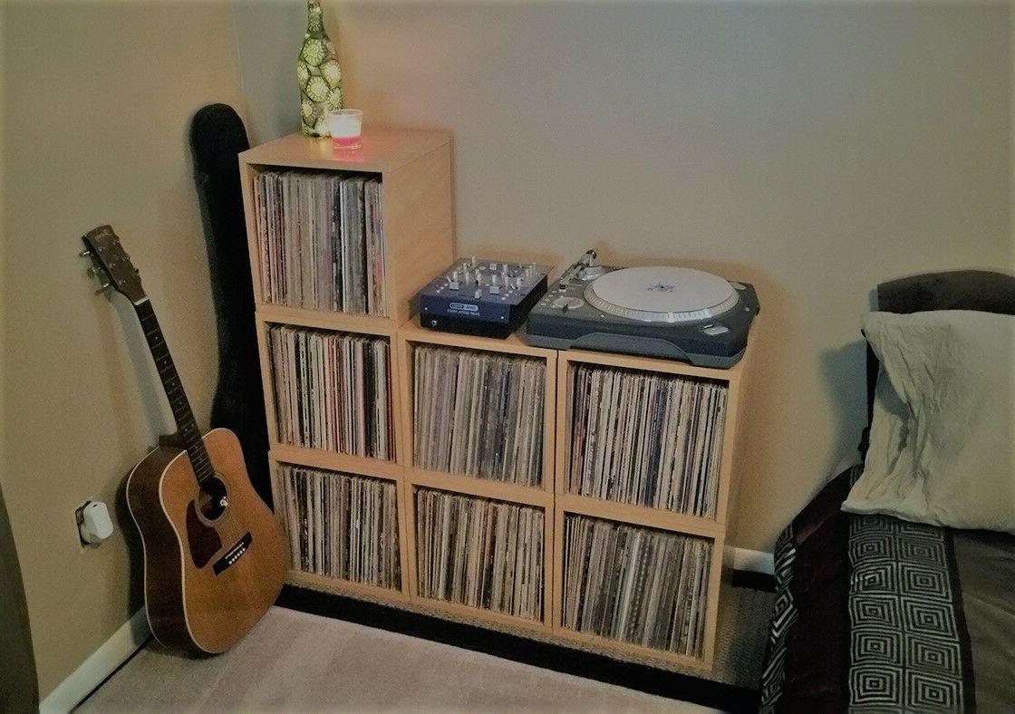 Vinyl Record Album LP Album Bookcase